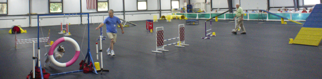 Agility trial at QCDTC